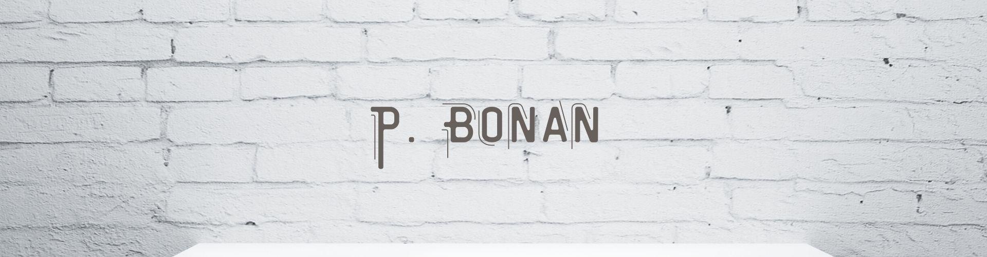 Bonan : Artiste Art Urbain dans galerie d'art en ligne SAO