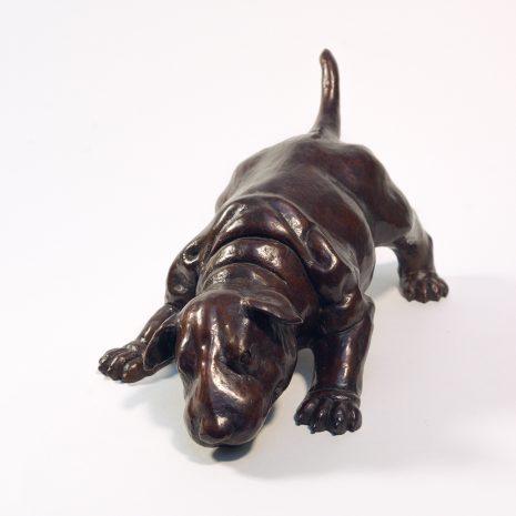 Pradel-Fraysse Sculpture Baby Bull terrier Art Contemporain Galerie d'art en ligne